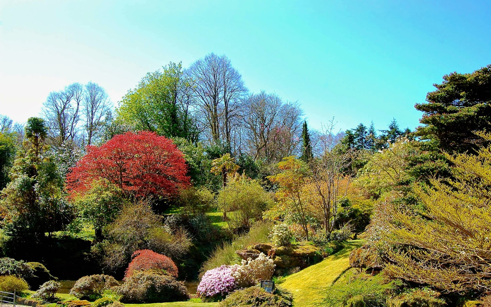 Rock garden at Mount Stuart house, Isle of Bute