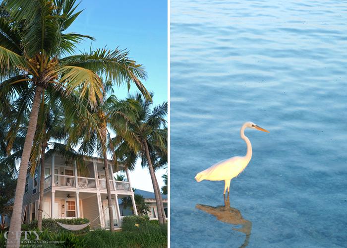 sunset key guest cottages