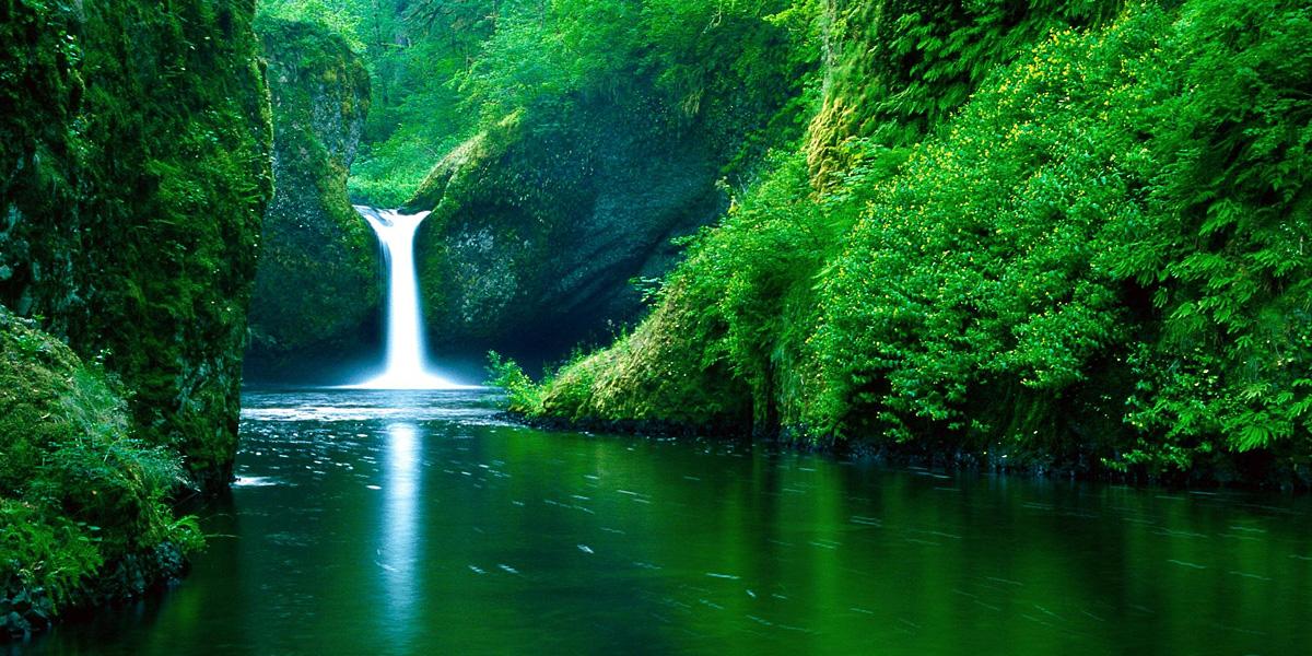 Green 300+ Muhteşem HD Twitter Kapak Fotoğrafları