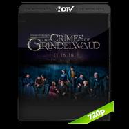 Animales fantásticos: Los crímenes de Grindelwald (2018) HC HDRip 720p Audio Ingles 2.0 Subtitulada