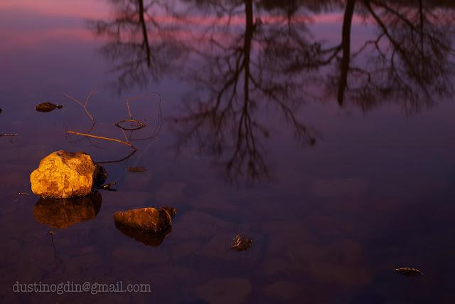 Pond reflections Shelby Park Nashville