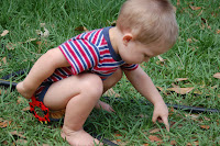 toddler boy outside in grass