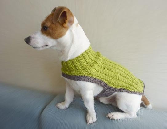 Crochet , Lana , Perro , Ropa para Perro , Tricot