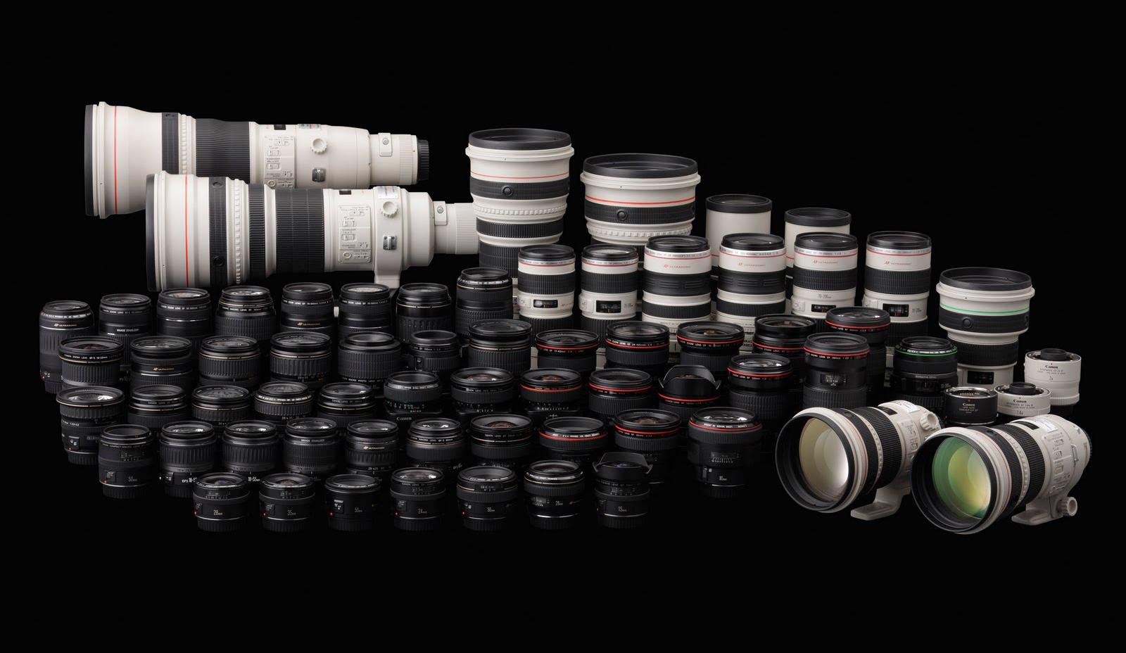 Michael Daniel Ho - The Wildlife Ho-tographer: Canon EF Lens