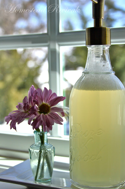 Homemade Liquid Handsoap – 3/21/12