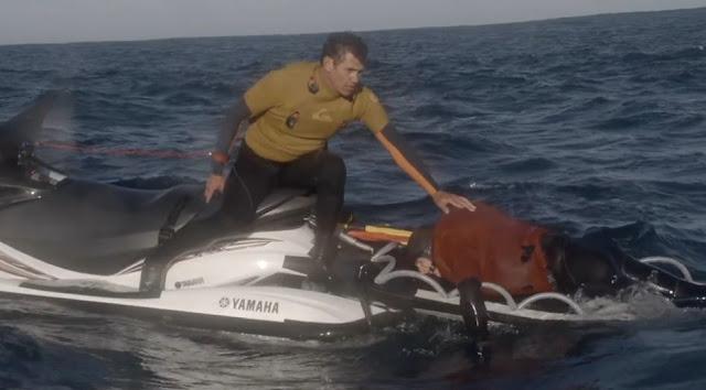 la mayor ola surfeada en australia 02
