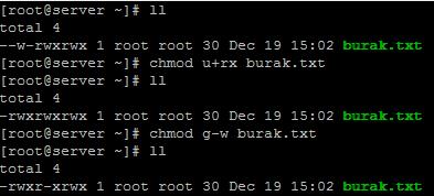 Linux'de Dizin içindeki Tüm Dosya izinlerini Ayarlamak
