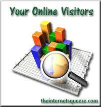 Online Visitor