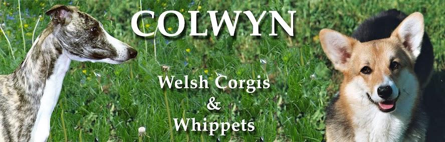 Colwyn