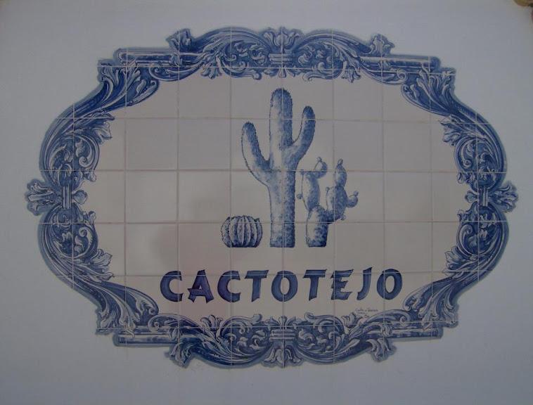 Cactotejo
