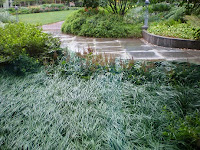 Rain Garden - 011, tn 15