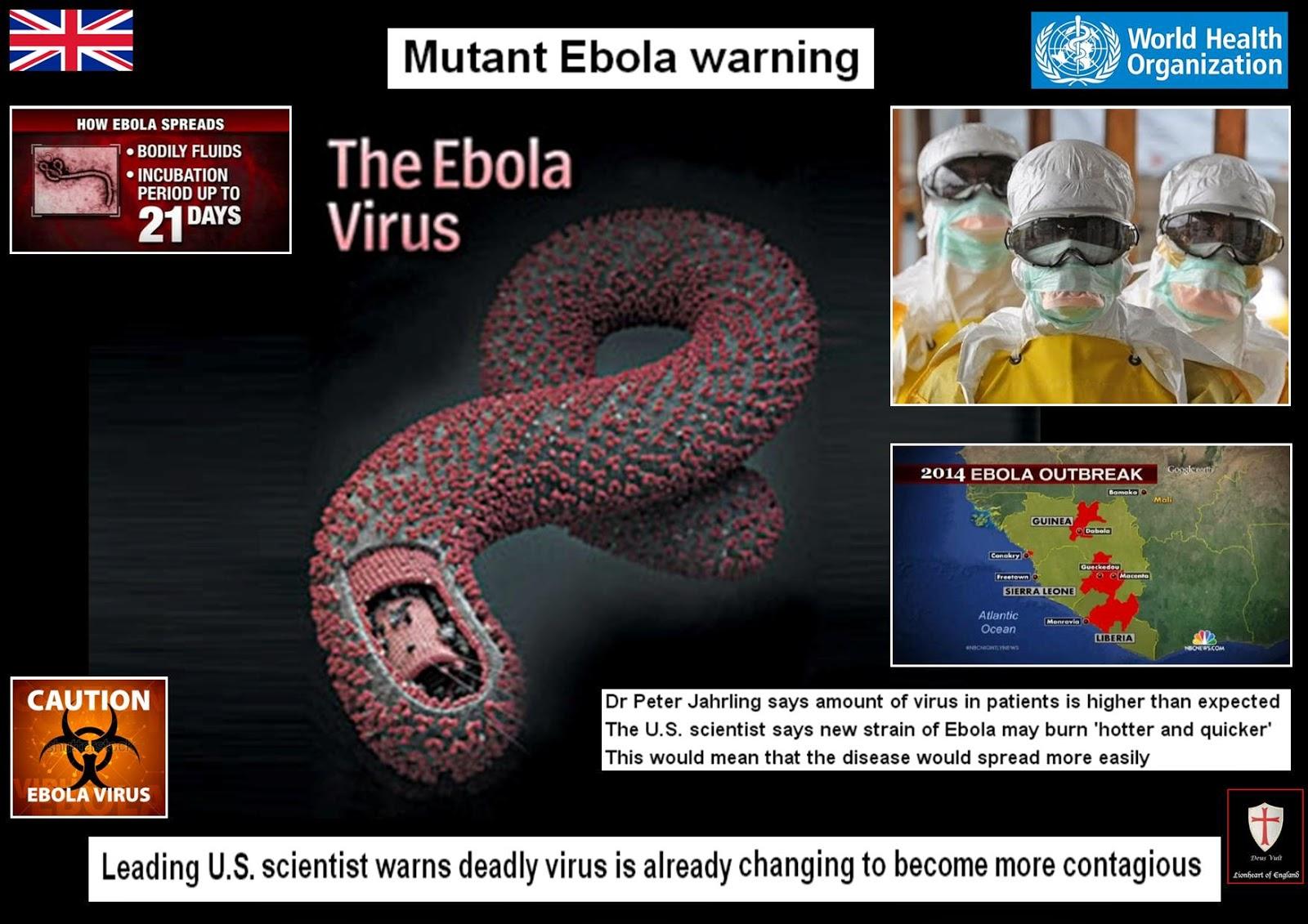 ebola virus dk