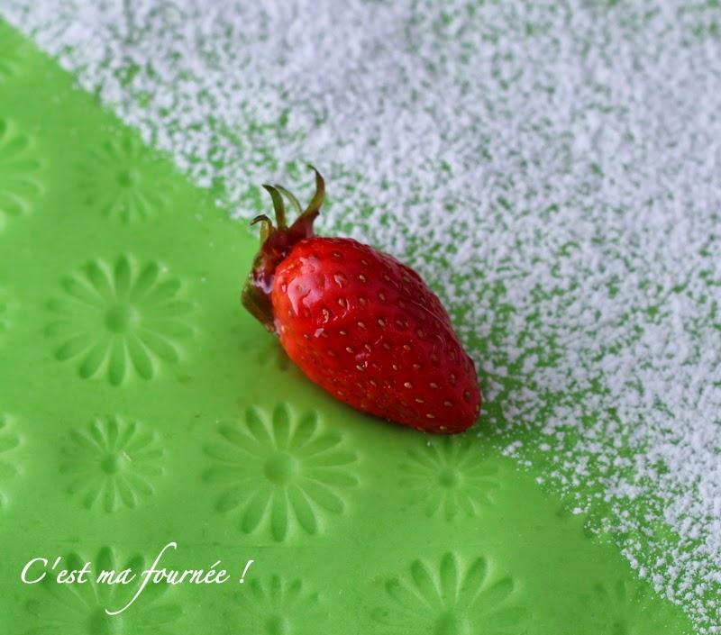 Le fraisier 2015