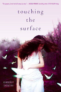 Book cover of Touching the Surface by Kimberly Sabatini