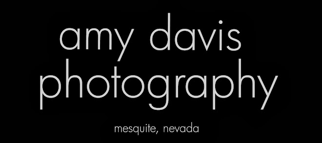 Amy Davis Photography