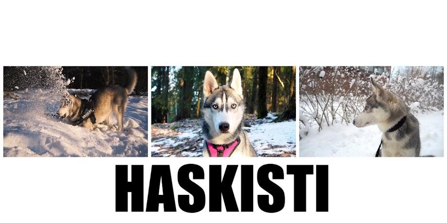 HASKISTI