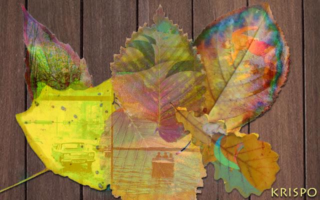 varias hojas de otoño sobre una mesa