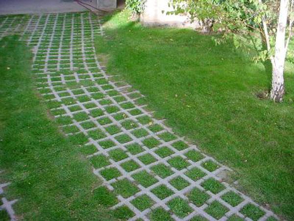 Construccion De Piscinas Con Ladrillos Of A 39 Pallota Bloques De Cemento