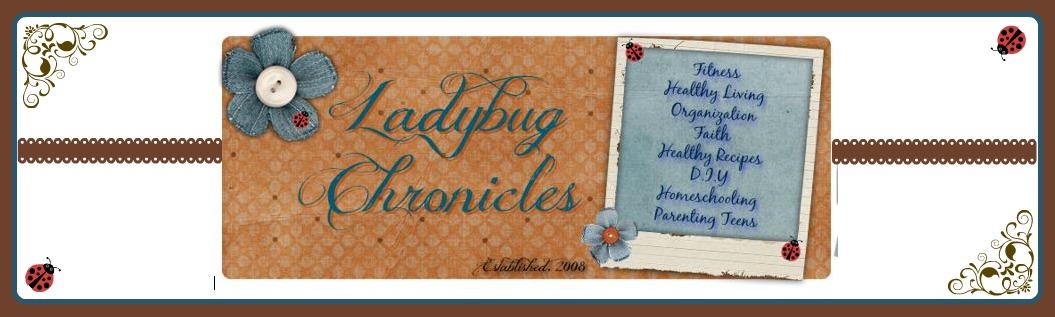 Ladybug Chronicles
