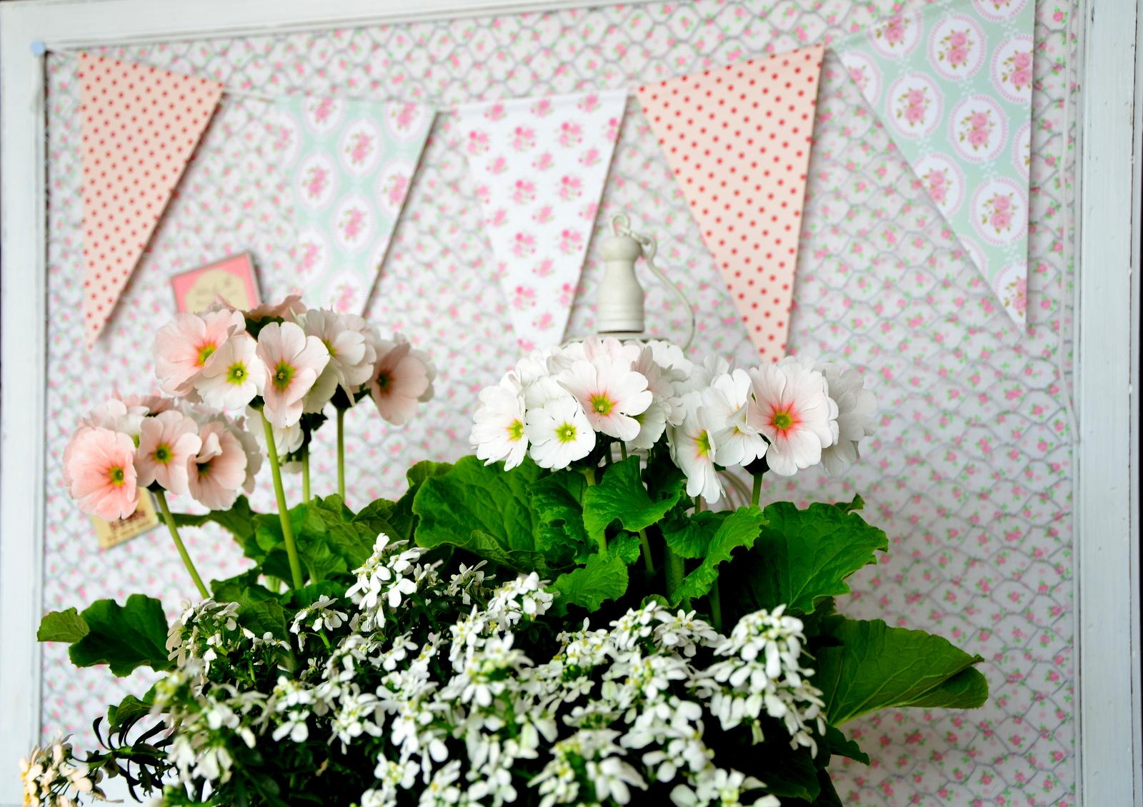 Shabbychiclife: festa di primavera si parte!! fiori