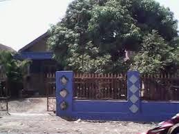 Resiko tanam pohon Mangga dan Nangka di dekat Rumah