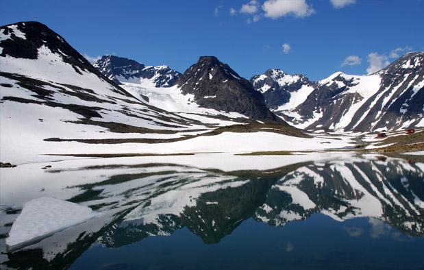 Bioma tundra gugur Ekosistem Darat