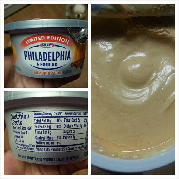 Shannon's Lightening the Load: Philadelphia Pumpkin Spice Cream Cheese