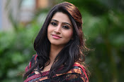 Shamili dazzling photos in saree-thumbnail-2