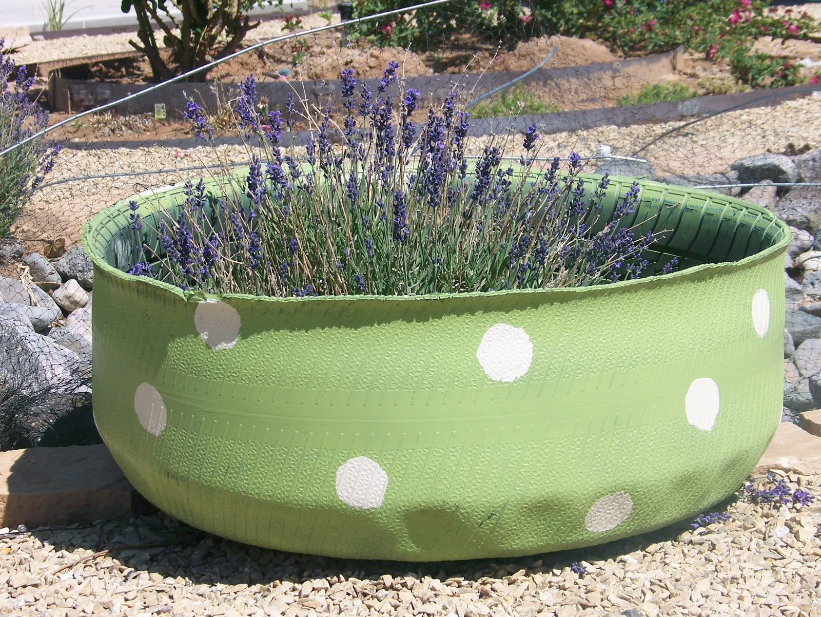 Maisies daisies upcycled tire planters for Using tyres as planters