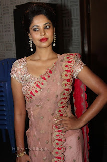 Actress Bindu Madhavi Saree Picture Stills 005.jpg