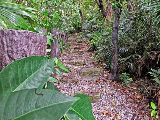 trail, stairs, woods