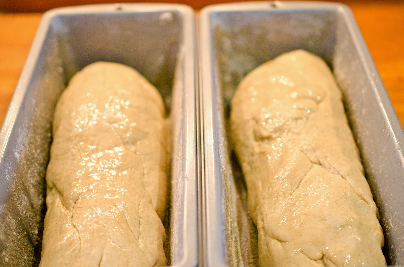 Divide Dough In Half Flatten And Roll Tightly Like A Cinnamon Roll And Place In Prepared Pans Brush With Co Oil Or Canola Oil