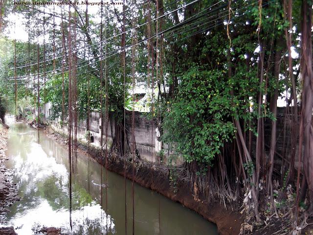 Klong Bang Yai