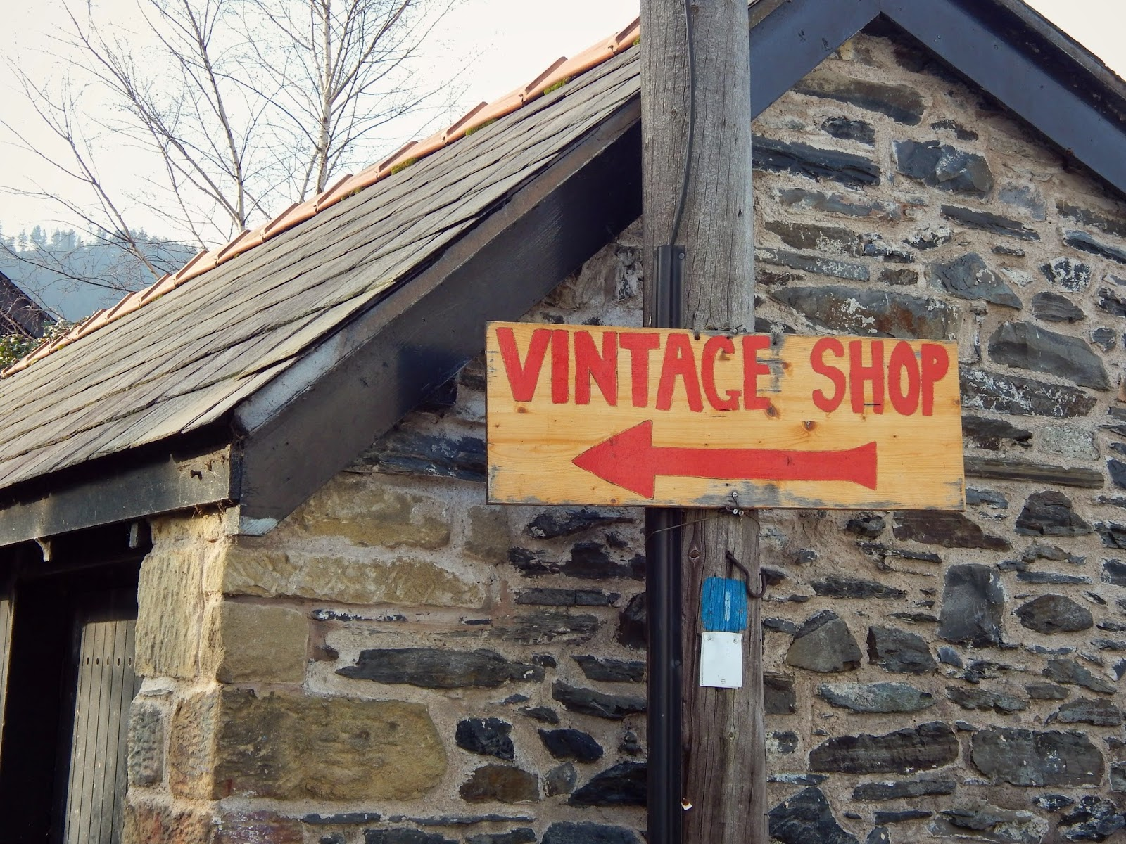 Vintage Thrift Shop