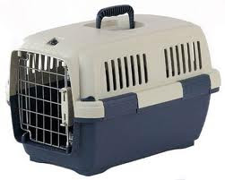 gambar pet carrier