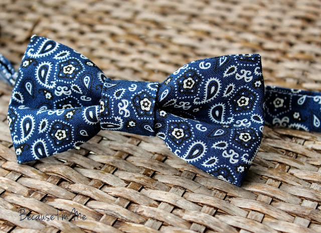 Because I'm Me Bandanna Inspired Navy Paisley Bow and Neck Ties for boys and men