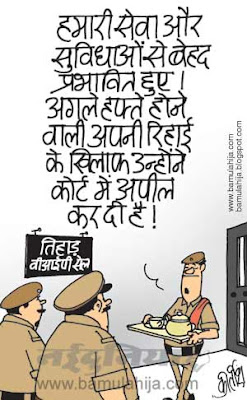 suresh kalmadi cartoon, cwg cartoon, corruption cartoon, corruption in india, indian political cartoon