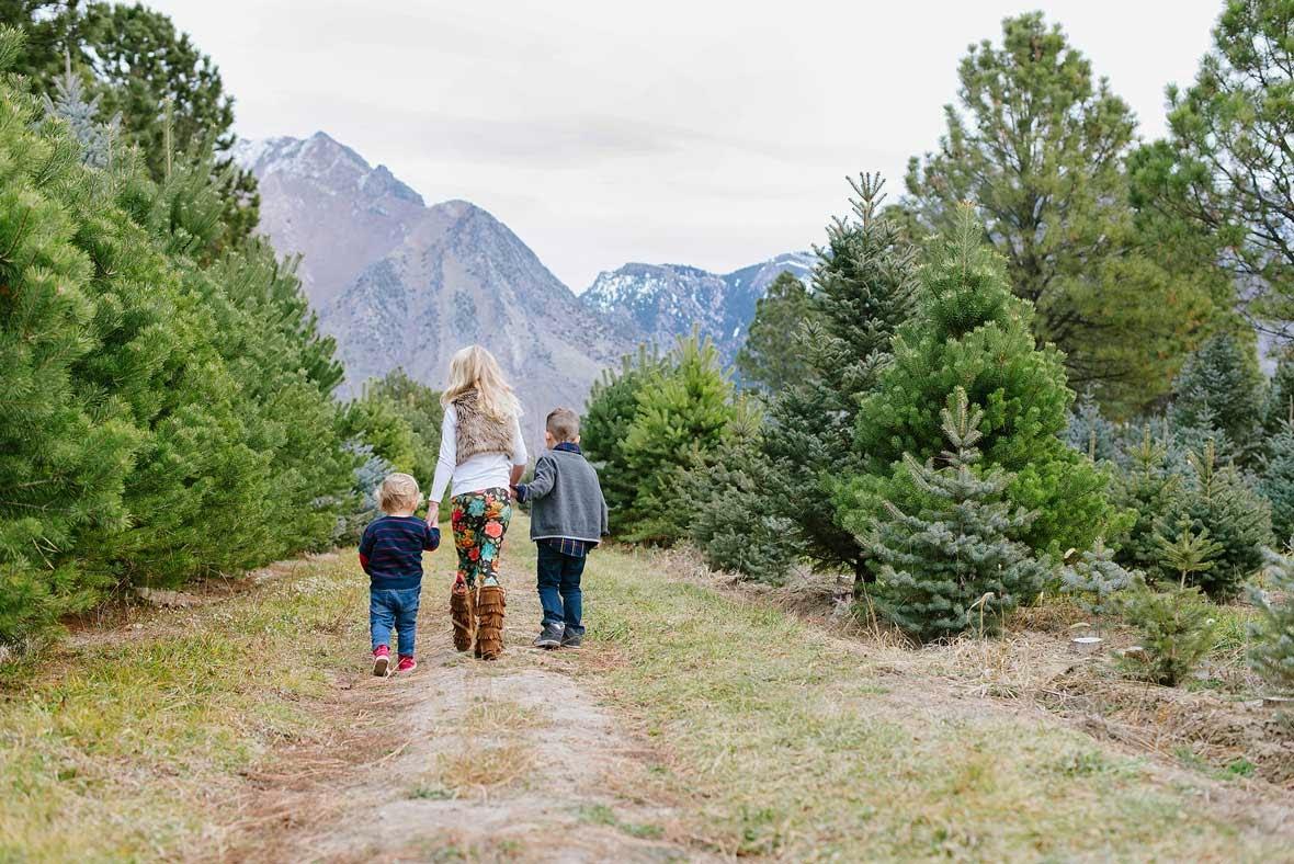 Jessica Haderlie Photography Happy December! - Becks Christmas Tree Farm