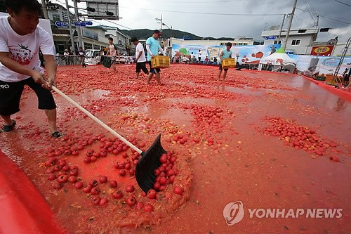 Hwacheon Tomato Festival