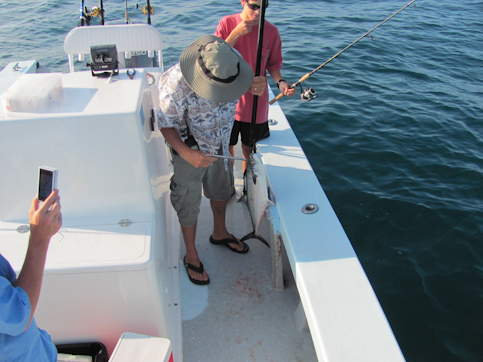 Emerald isle fishing report great mackerel run this week for Fishing report emerald isle nc