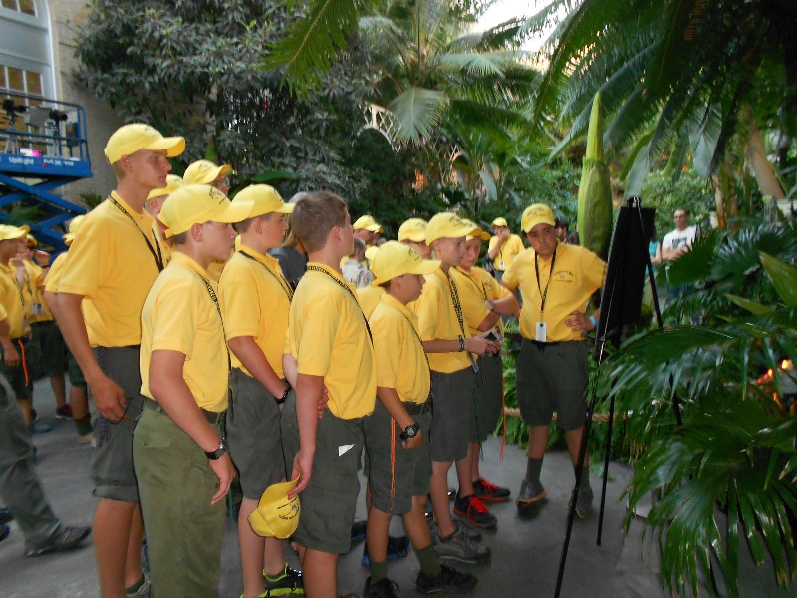 Jamboree Troop C313 Washington D C and the Lemonheads