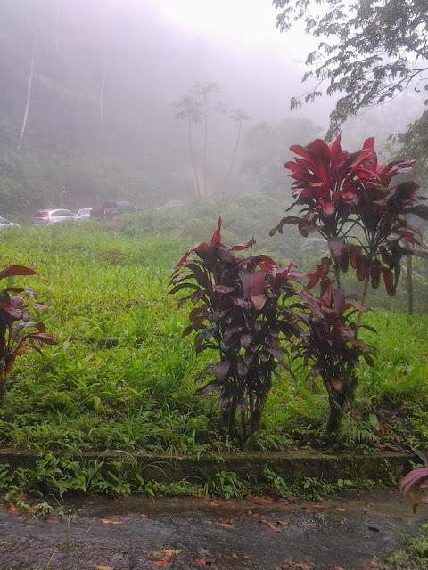 Foto tirada à caminho de Minas Gerais
