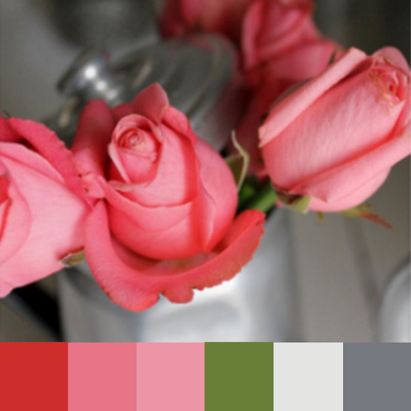 Pink rose color palette Colors that go with rose pink