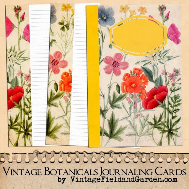 http://4.bp.blogspot.com/-GcvfXPteK30/U4ijmApb2AI/AAAAAAAAJBY/F3htmcIp7V8/s640/Vintage+Botanicals+Nature+Journaling+Cards+Set+3+Preview.jpg
