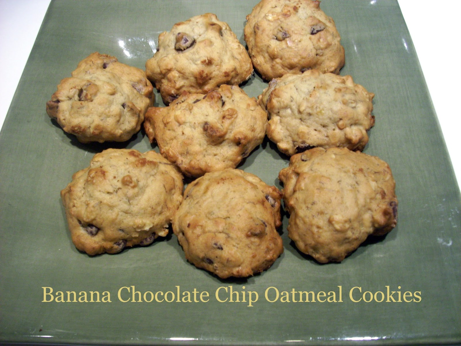 are a combination of a chocolate chip cookie and an oatmeal cookie ...