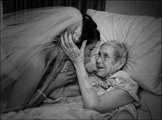 grandmother's love