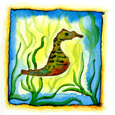 Illustration of lined seahorse found in Lafayette River, Norfolk, VA