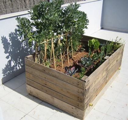 Pipoca and her things reciclaje pallet exterior plantas - Huerto con palets ...