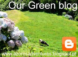 Land blog