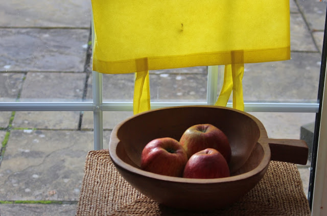 My improvised photography studio - in the kitchen by the patio door